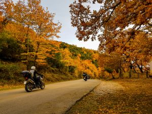 Common Hazards for Motorcycle Riders in Autumn